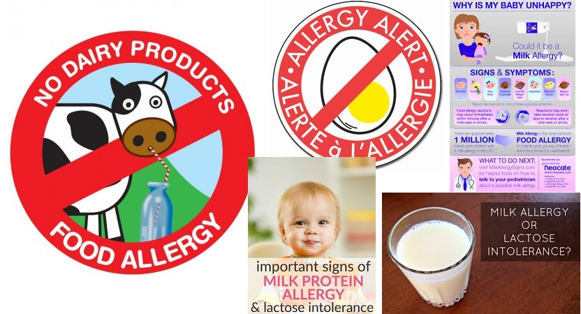 Milk Allergy and Lactose Intolerance in Infants