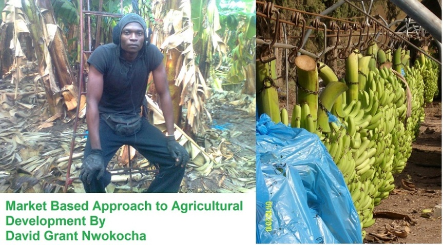 Market Based Approach to Agricultural Development