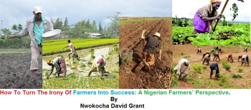 How To Turn The Irony Of Farmers Into Success: A Nigerian Farmers'Perspective