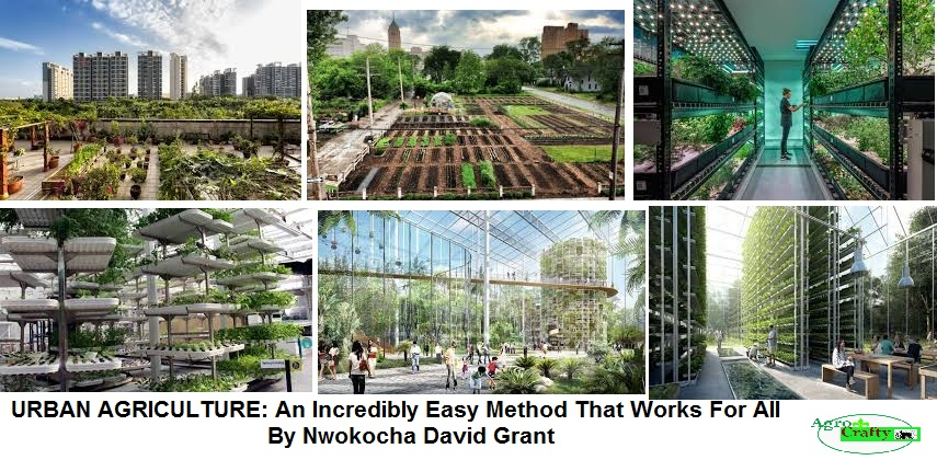 Urban Agriculture/Farming: An Incredibly Easy Method That Works For All